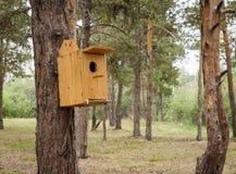 Behelfsmäßige Häuser für die Vögel im Park Lizenzfreie Stockbilder