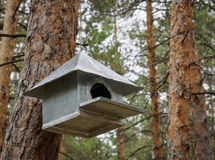 Behelfsmäßige Häuser für die Vögel im Park Stockfoto