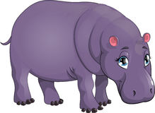 Behemoth. Beautiful hippopotamus on a white background stock illustration