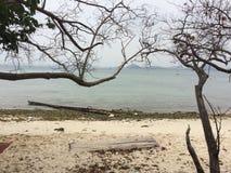 Behide das árvores a praia Fotos de Stock
