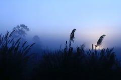 Behide de lever de soleil la montagne Images libres de droits