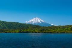 Behide de Monte Fuji a floresta com lago fotos de stock