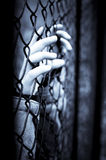 Behind bars stock photos