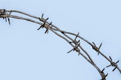 Behind bars Royalty Free Stock Image