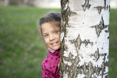 Behind birch stem Stock Photos