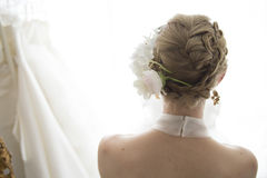 From behind the bride Stock Image
