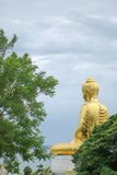 Behind Buddha with tree Stock Photo