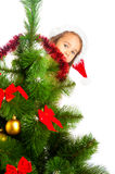 Behind Christmas tree Stock Images