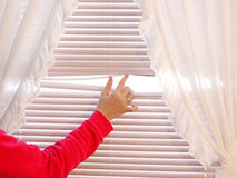 Behind the Curtain. Hand opening the window blinds Royalty Free Stock Image