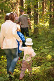 Behind Family in forest to mushrooms Royalty Free Stock Photo