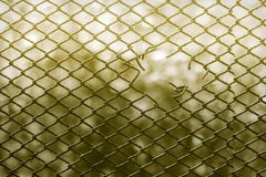Behind the fence Royalty Free Stock Photography