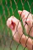 Behind Fence II. An image of a person under restriction Royalty Free Stock Photos