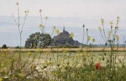 Behind flowers. Mont-Saint-Michel behin flowers Stock Photos