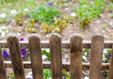 Behind garden fence Royalty Free Stock Images