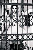 Behind gate Royalty Free Stock Image