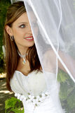 Behind Look. A bride standing behind net in her dress Stock Photography