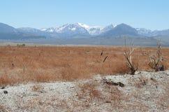 Behind the Mono Lake Stock Photo