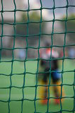 Behind the Net Royalty Free Stock Image
