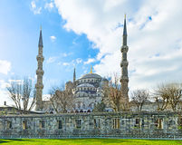 Behind the old wall. The view on the Blue Mosque behind the old rampart, Istanbul, Turkey Stock Images