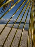 Paradise behind the palm , sunshine and blue lagoon stock images