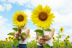 Behind sunflowers. Portrait of cute girls hiding behind sunflowers on sunny day Royalty Free Stock Photo