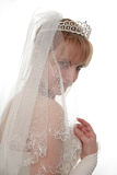 Behind a veil Royalty Free Stock Images