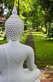 Behind the white Buddha statue. Stock Image