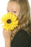 behing blommanederlag Royaltyfri Fotografi