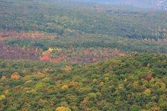 Bei alberi di autunno fotografie stock libere da diritti