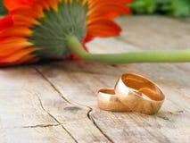 Bei anelli di cerimonia nuziale Fotografia Stock Libera da Diritti