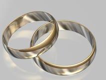 Bei anelli di cerimonia nuziale illustrazione vettoriale