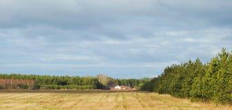 Bei campo di autunno, case ed alberi, Lituania Fotografia Stock