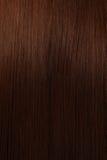 Bei capelli di lustro Fotografie Stock Libere da Diritti