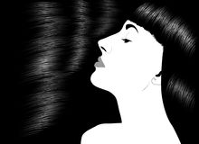Bei capelli lunghi lucidi Fotografie Stock Libere da Diritti
