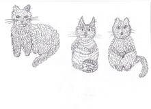Bei caratteri del gatto di arte animale adulti Immagini Stock Libere da Diritti