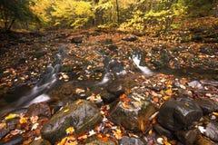 Bei cascata della cascata e fogliame di caduta Fotografie Stock Libere da Diritti