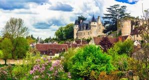 Bei castelli romantici del castello di Montresor - di Loire Valley Fotografia Stock Libera da Diritti