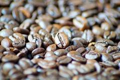 Bei chicchi di caffè come immagine del fondo immagini stock libere da diritti