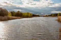 Bei cieli blu un giorno di molla lungo il fiume di Illinois Immagini Stock Libere da Diritti