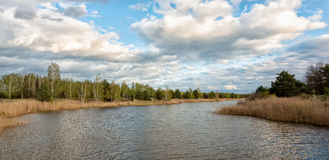 Bei cieli blu un giorno di molla lungo il fiume di Illinois Fotografia Stock