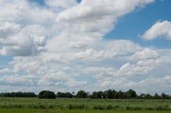Bei cielo ed albero Fotografia Stock
