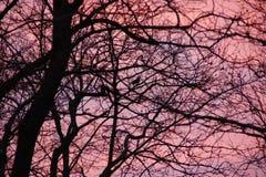 Bei colori all'alba france Immagini Stock Libere da Diritti
