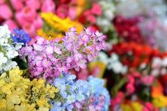 Bei colori dei fiori di plastica Immagine Stock