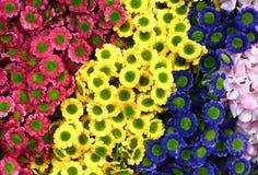 Bei colori dei fiori di plastica Immagini Stock Libere da Diritti
