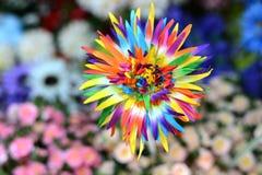 Bei colori dei fiori di plastica Immagine Stock Libera da Diritti