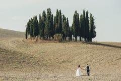 Bei coppie, sposa e sposo di nozze sul giacimento di grano con Cl immagine stock libera da diritti