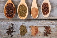 Bei cucchiai di legno con differenti generi di spezie Immagine Stock Libera da Diritti