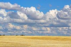Bei cumuli sopra un campo raccolto dorato Fotografie Stock