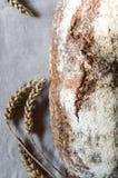 Bei di recente pane ed orecchie rustici al forno di grano Fotografia Stock Libera da Diritti