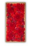 Bei fiori artificiali rossi nel telaio di legno isolato sul whi Fotografia Stock Libera da Diritti